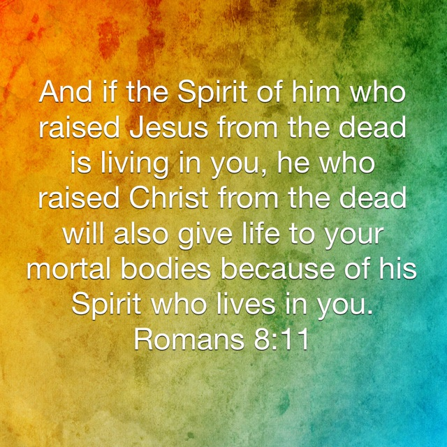 Image result for romans 8